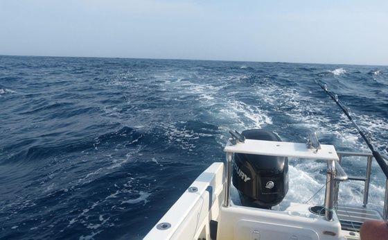 Magnum Fishing Charters